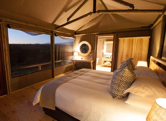 Amakhala Game Reserve, Zuid-Afrika: Luxury Safari Tent - View From Bed