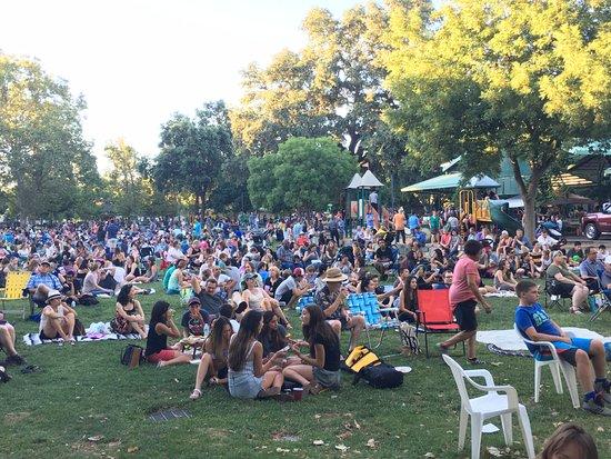 Davis, Калифорния: Spectators