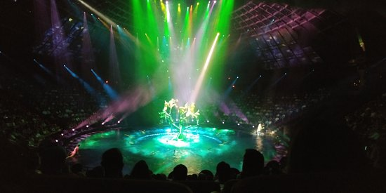 Le Reve - The Dream: 20170801_191203_large.jpg