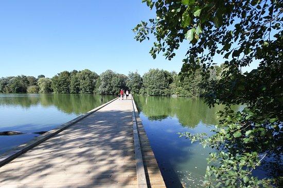 Villars-les-Dombes, Francia: l'étang central du PArc des Oiseaux