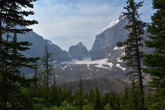 Plain of Six Glaciers Tea House: View