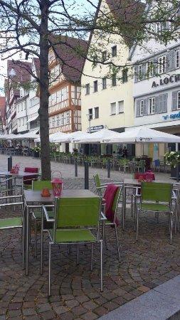 Unterm Baum Oder Unterm Schirm Bild Von Domizil Leonberg
