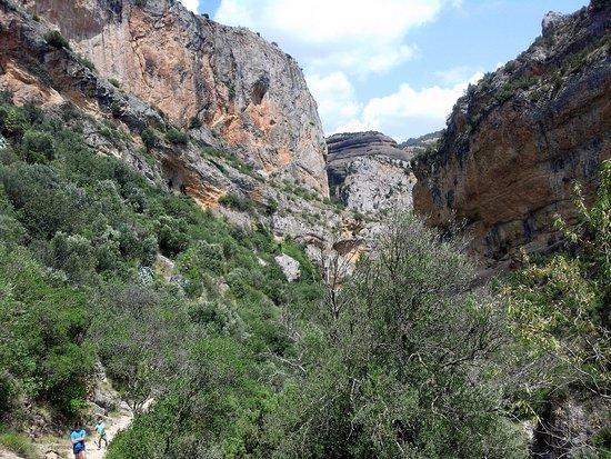 Alquezar, İspanya: Vista del cañon del río Vero