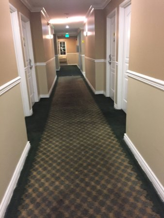 Torrance, Kalifornien: Filthy carpet and rooms. The hotel is scary looking. We did not stay the night. We got out of th