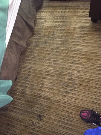 Extended Stay America - Sacramento - Roseville : Stains on carpet from god knows what.