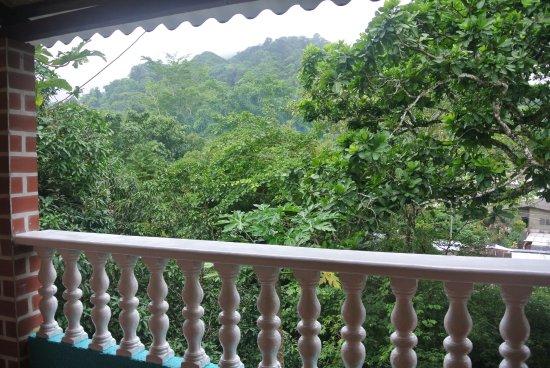 Minca, Colombie : vista a la flora y ala fauna,,rios y picina natural