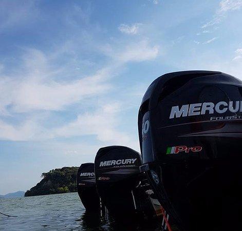 Castiglione del Lago, Italie : Mercury 40 hp pro 4stroke @ Lago  Trasimeno