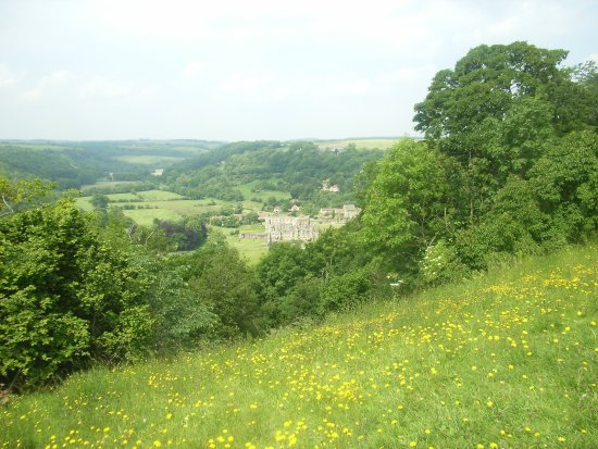 Helmsley Picture