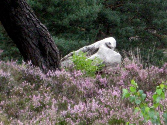 Mehlinger Heide: Eine Taube? Nein, nur Totholz!
