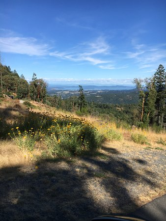 Malahat, Canada: Grounds near the top of the resort