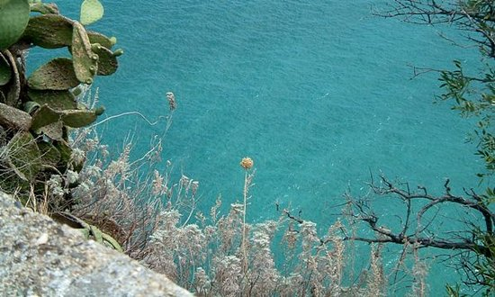 Copanello, Italia: Mare