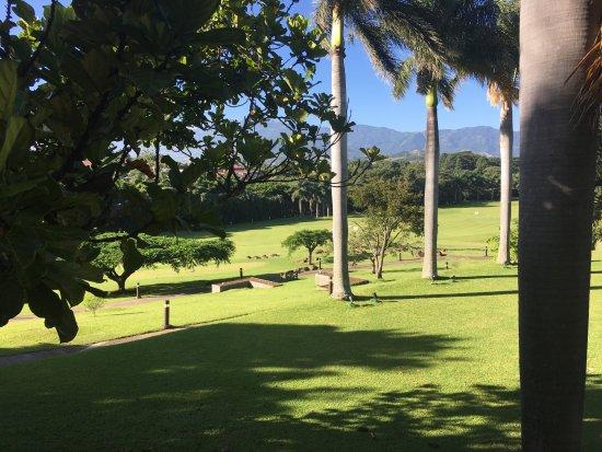 San Antonio De Belen, Kosta Rika: View from breakfast area
