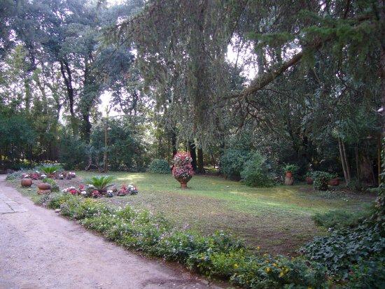 Vicopisano Photo