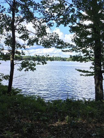 White Cloud, MI: View of the lake from one of the benches along the walking trail.