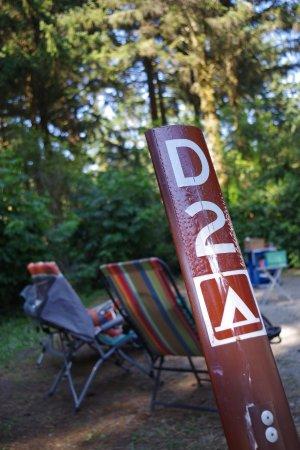 Harris Beach State Park: Our campsite