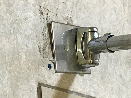 Decatur, Géorgie : Mold and shower curtain rod falling down