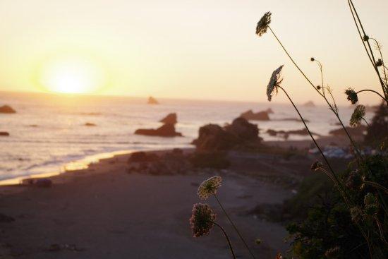 Harris Beach State Park: Sunset is spectacular