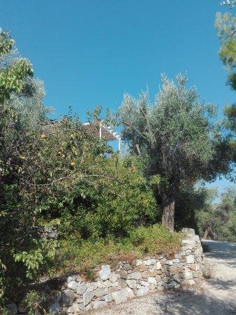 Gera, Yunanistan: Het appartament (2A)