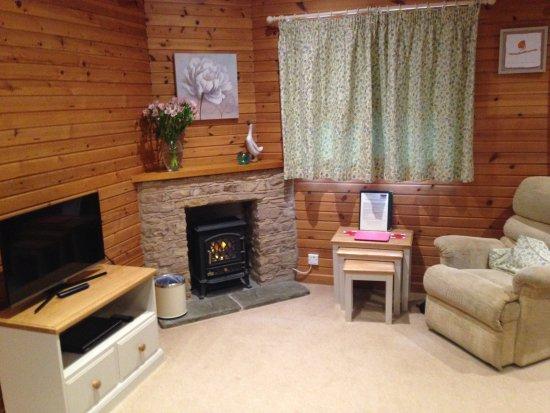 Ford Farm Lodges: Kilcot Spa lodge living room