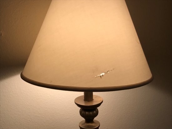 Decatur, Géorgie : Lamp in the room with obvious hole in the shade