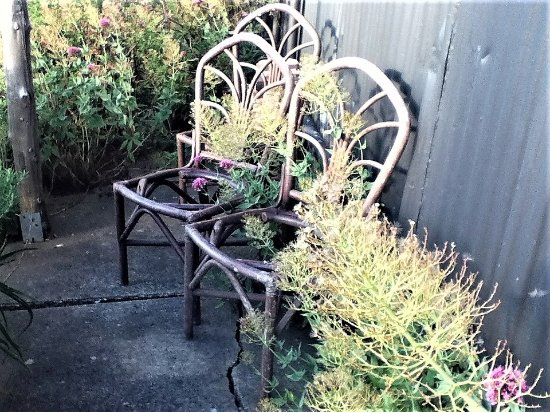 Daylesford, Australien: This part of their garden was my personal favourite [January - 2017]