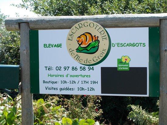 Groix, Франция: Visite de l'Escargoterie à 11h00 mardi, jeudi et vendredi