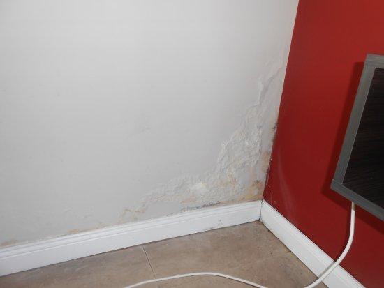 Campana, Argentina: pared del living, esta misma humedad habia en el techo del cuarto