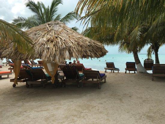 Cayo Ambergris, Belice: Secret Paradise Chairs