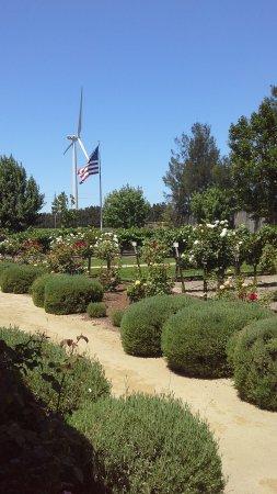Greenfield, كاليفورنيا: grounds well kept.
