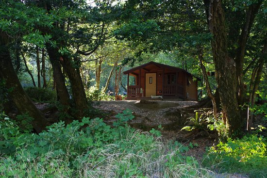 Alfred A Loeb State Park Brookings Or Top Tips Before