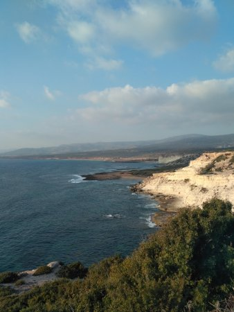Agios Georgios, Cypern: IMG_20170817_184045_large.jpg