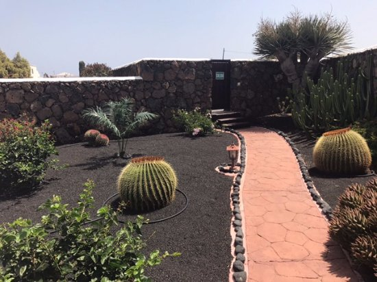 Guime, Spain: Eigen cactustuin