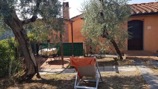 Az. Agr. Villa Pacinotti: giardino dell'appartamento