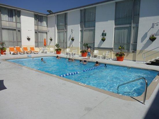 The Midtown Hotel: Pool