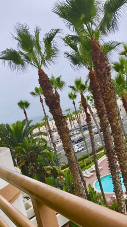 The Waterfront Beach Resort, A Hilton Hotel : View from fifth floor