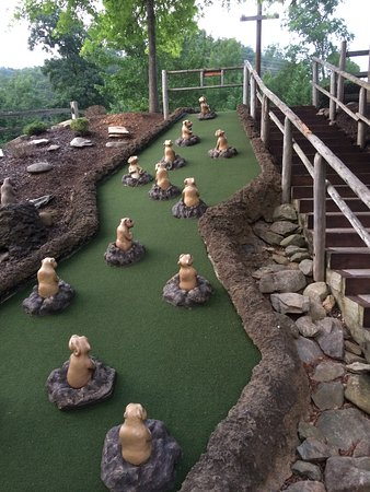 Ripley's Davy Crockett Mini Golf: favorite hole at this course. got a hole in one