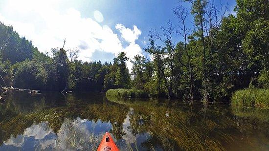 Turystyka Aktywna WODNIAK: Spływ rzeką Krutynią 2017