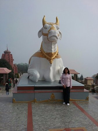 Namchi, India: One of the statues of the sacred cow facing the statue of Lord Shiva.