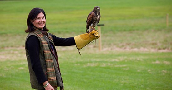 Γούντστοκ, Βερμόντ: New England Falconry at the Woodstock Inn & Resort