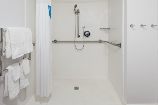 Hampton Inn Atlanta-Perimeter Center: ADA Roll-in Shower