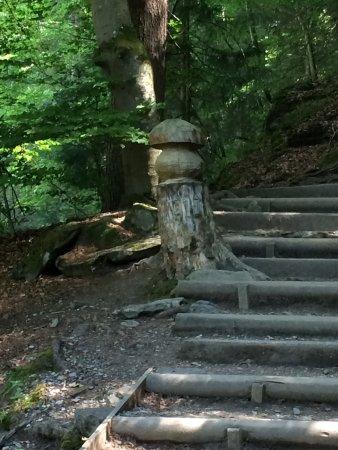 Les Houches, Frankreich: photo4.jpg