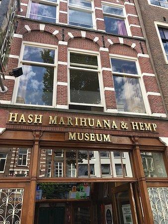 Hash Marihuana & Hemp Museum: Desde fuera