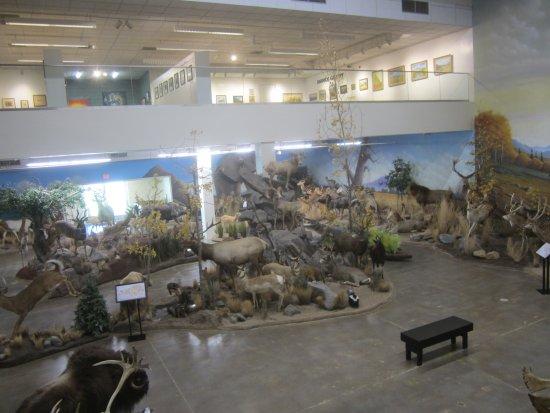 Elko, NV: NE Nevada Museum .. ..