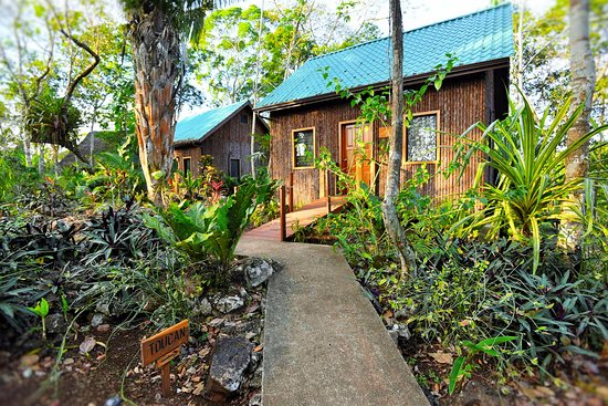 San Antonio, Belize: Toucan family cabana