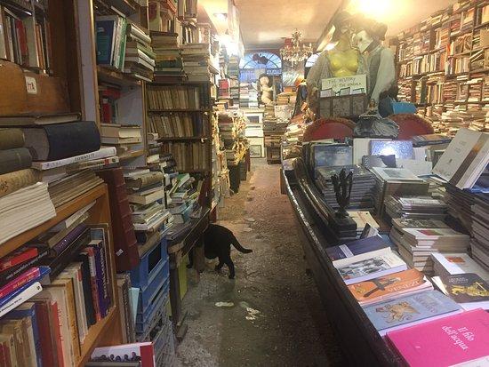 Libreria Acqua Alta: photo0.jpg