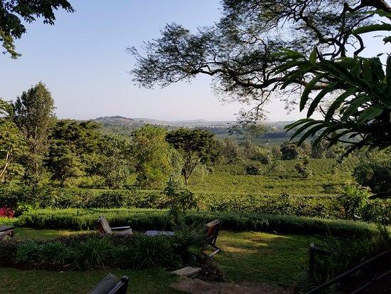 Karatu, Tanzania: Enjoying the view while sipping on delicious coffee