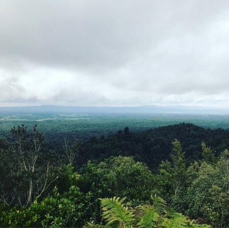 Mount Otanewainuku