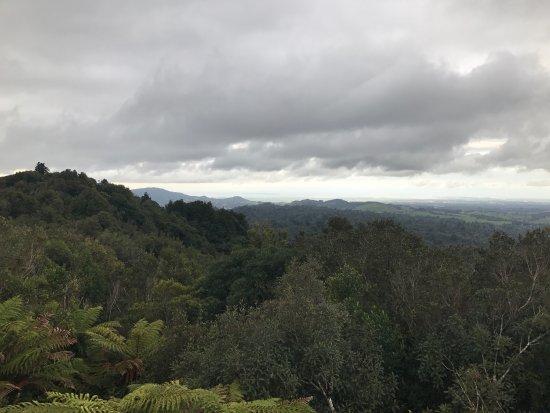 Te Puke, Nowa Zelandia: photo1.jpg