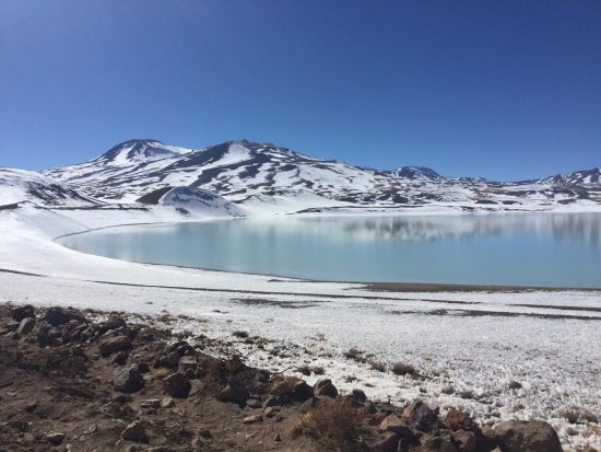 Antofagasta, Chile: Laguna Tuyajto