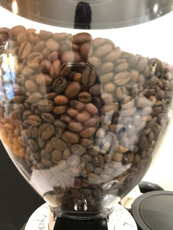 Hay, Australia: CottonWool Crema